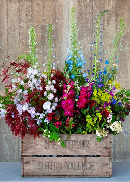 Floral display in Bromyard Apple Crate style box by florist Rebel Rebel