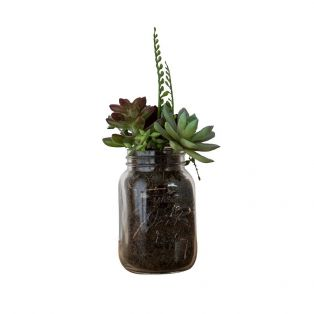Mixed Faux Succulents in Glass Mason Jar
