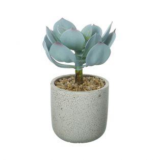 Faux Echeveria in Cement Pot