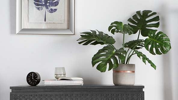 Faux Plants Collection